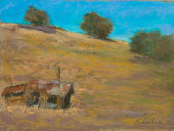 Suzanne Leslie - Petaluma Field