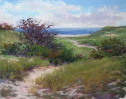 Lana Ballot - Smith Point Dunes (plein air)
