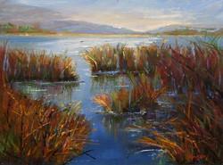 JoAnne Wood Unger - Lagoon to Sea
