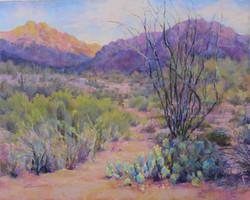 Donna H. Branson - Sonoran Symphony