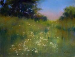 Barbara Benedetti Newton - Meadow Lights.jpg