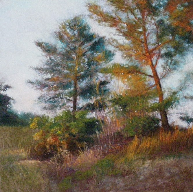 Marjorie Vincent - Pine Trees at Sunset 2