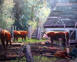 Brian Simons - Behind the Barn