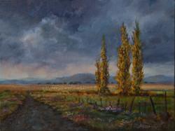 Ina Millman - Poplars Near Wakkerstroom