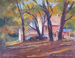 Michele Byrne - Autumn Sunlight