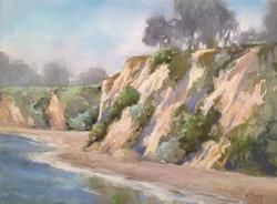 Kris Buck - Morning Mist at Paradise Cove