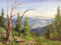 Nickie Barbee - Foothills Vista