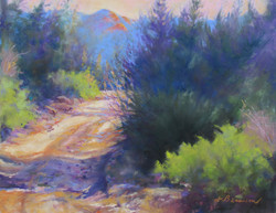 Donna H. Branson - The Road In