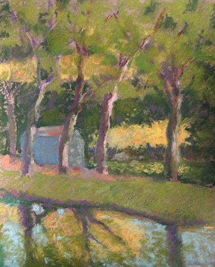 Denise vitollo - Hagley Canal