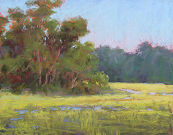 Marsha Hamby Savage - Shems Creek Gold (plein air)