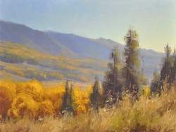 Stacey Peterson - Autumn Morning
