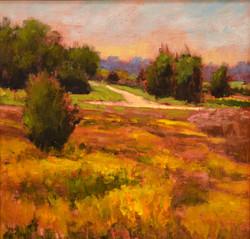 Tamar Rudavsky - Walnut Creek