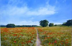 Michael Salt - Poppy Field