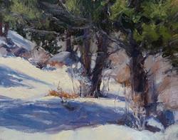 Pat Carney - Glorious Winter