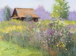 Brent Seevers - Walt's Barn