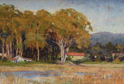 Clark Mitchell - Carmel Wetlands (pastel)