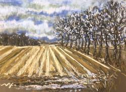 Kerry Nowak - Winter Furrows