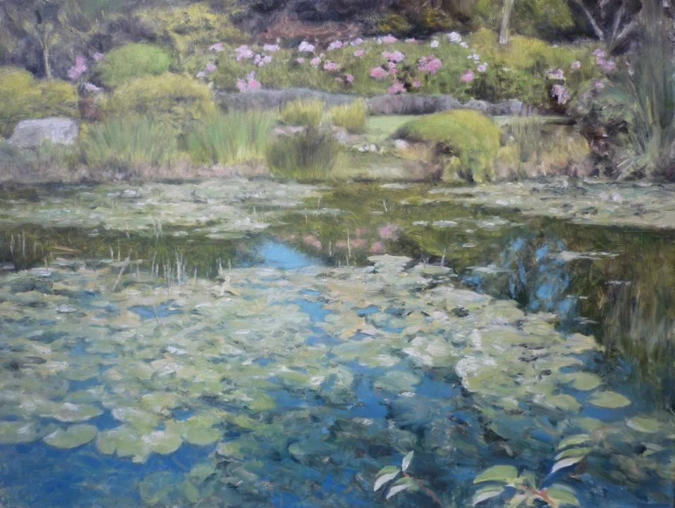 David Deamer - Lily Pond at Wareham, Dorset (oil)