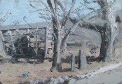 Matt Chinian - Brownell Corners Rd. (near rte. 22)