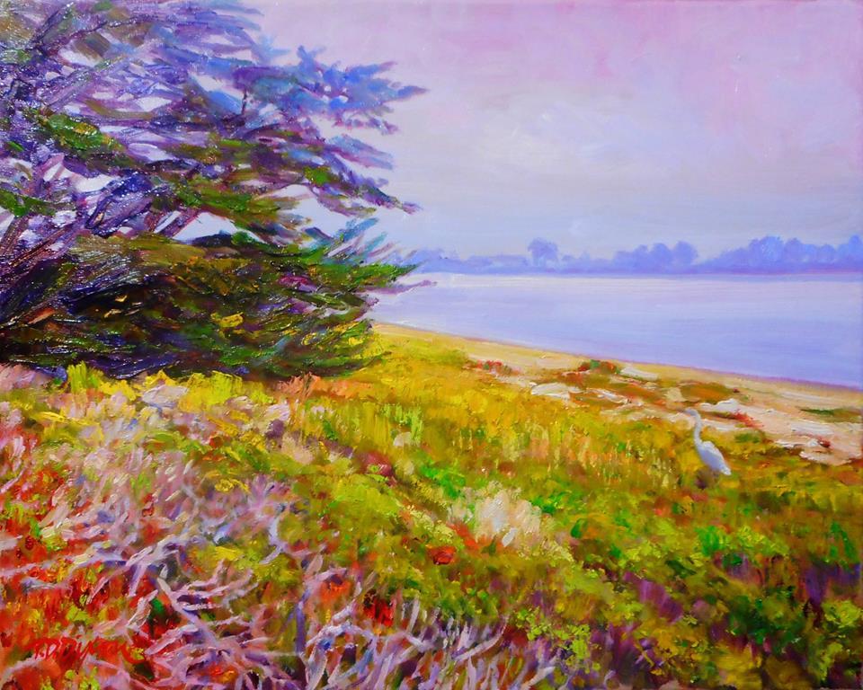 Timothy David Dixon - Local Color