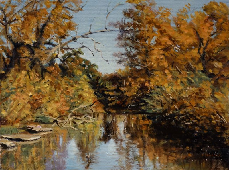 Daniel Fishback - Stream Near St Louis Municipal Opera in Forest Park