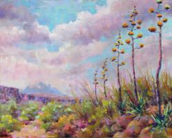 Donna H. Branson - Clouds Over Apache Trail