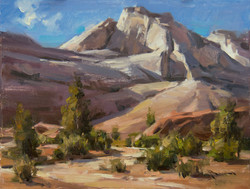 Mitch Baird - Sandstone Variety