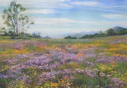 Terri Taber - Spring Fling