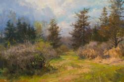 Mary Pettis - Spring Path