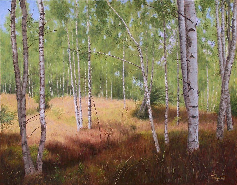 Dejan Trajković - Birch Forest
