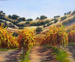 John Nichols - Fall Vineyard