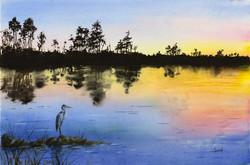 Barb Capeletti - Sunset Heron - Everglades