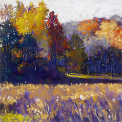 Clarence A. Porter - Walk in Cootes Paradise VI
