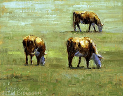 Janet Broussard - Panhandle Cattle