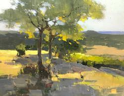 Zufar Bikbov - Twins over the Valley (plein air oil)