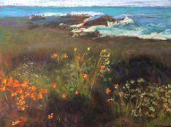 Suzanne Leslie - Highway One Beach