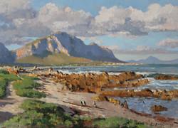 Roelof Rossouw - Penguins at Betty's Bay