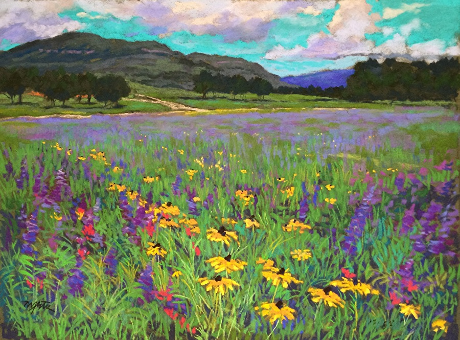 Mike Etie - Hill Country Wildflowers