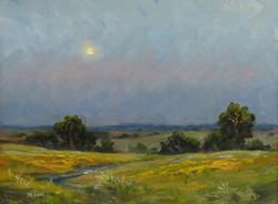 J.R. Cook - Moonrise