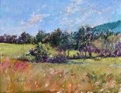 Susan Nicholas Gephart - Light on the Ridge at Hodge Farm