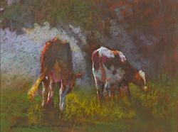 Aline Ordman - Foggy Cows