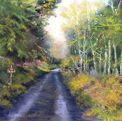 Bonnie Zahn Griffith - The Secret Road