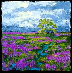 Nancy Overbury - Fields of Loosestrife