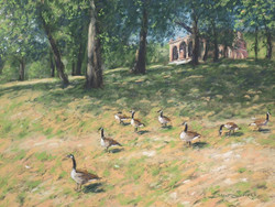 Brent Seevers - Waddling Geese