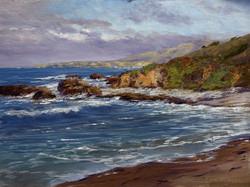 Donald Neff - Pescadero Cove