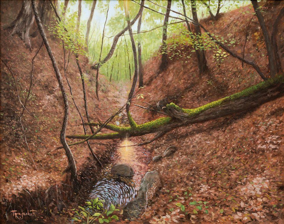 Dejan Trajković - Forest Stream