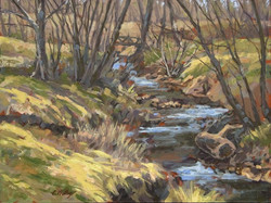 Chris Willey - Marr Creek, March