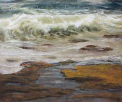Sandy Byers - Renewal