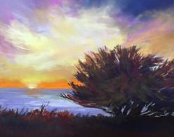 Sherri Cassell - Cambria Sunset