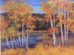 Bonnie Zahn Griffith - Barker Color